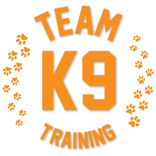 cropped-Team_K9_site_logo_512px.png